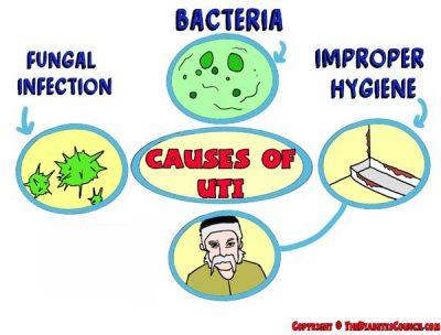 causes of a uti