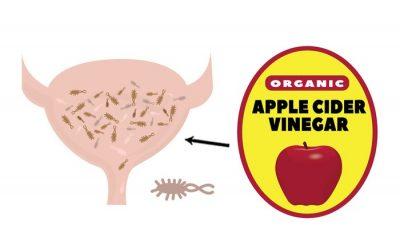 treat uti without antibiotics